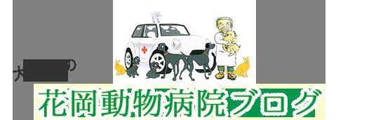 花岡動物病院ブログ
