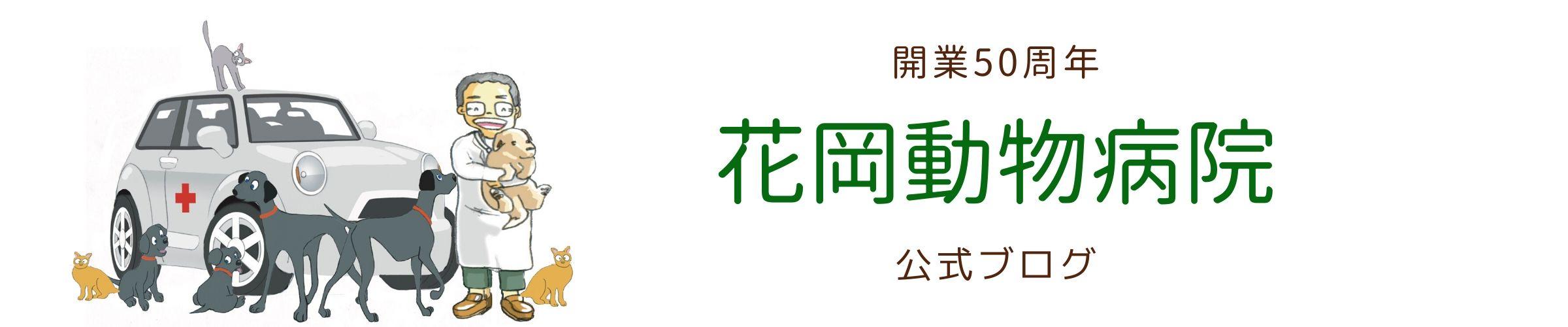 大和市の花岡動物病院ブログ