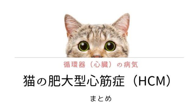 猫 肥大型心筋症(HCM)