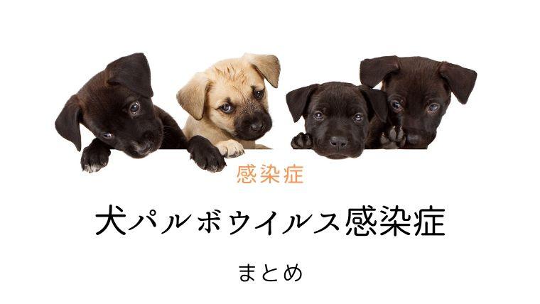 犬 パルボウイルス