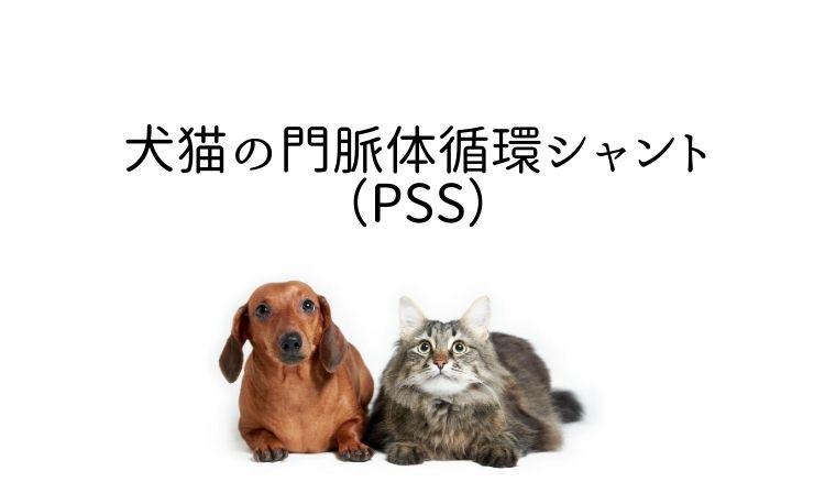 犬猫の門脈体循環シャント