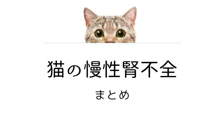 猫 慢性腎不全