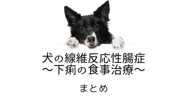 犬 線維反応性腸症 下痢